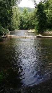 Ocunaluftee River