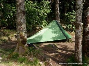 Backcountry Campsite 38