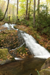 Chasteen Creek Cascades